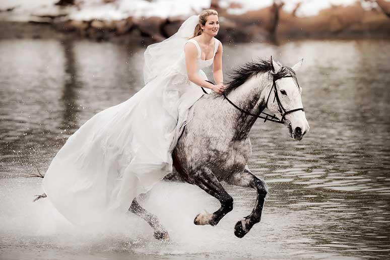 Hest Er Best 01 Front Priser